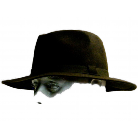 chapeaux gardian feutre laine -marron