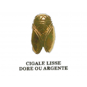PIN S cigale lisse
