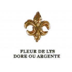 Pin's  Fleur de lys-doré