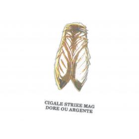 Broches cigale Striée MAG Doré ou Argenté